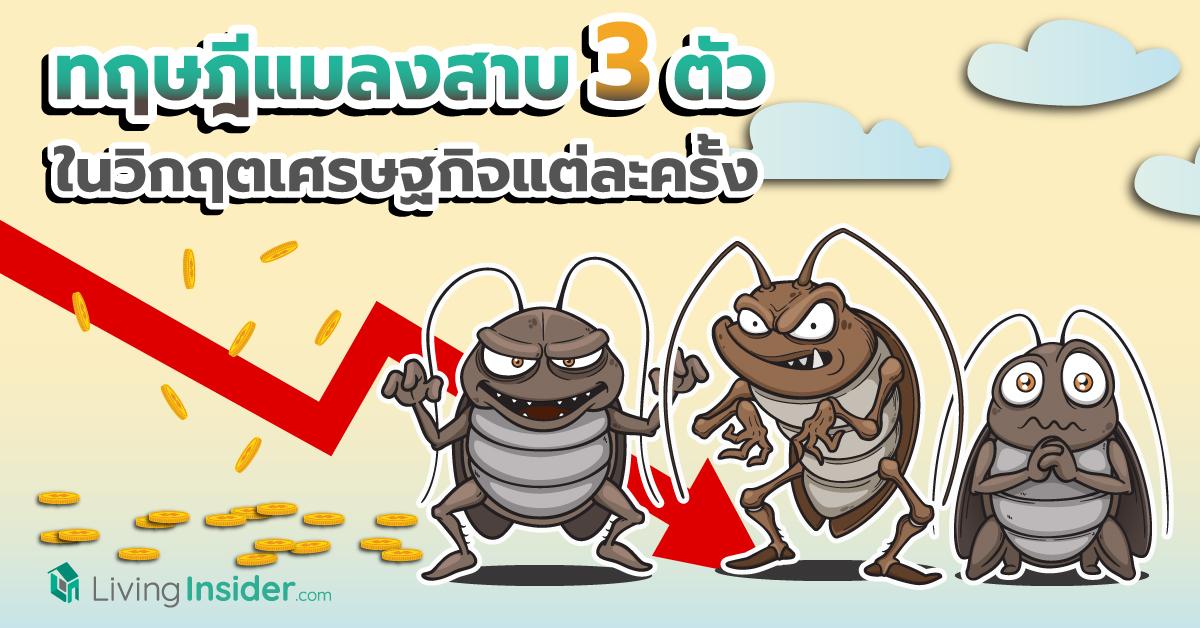 ทฤษฎีแมลงสาบ 3 ตัว ในวิกฤตเศรษฐกิจแต่ละครั้ง