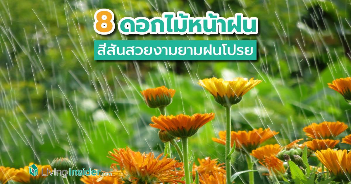 เตรียมเฮ คมนาคมขอ คสช.ออก ม.44 แก้ปัญหาเดินเรือน่านน้ำไทย ขยายเวลา-ลดค่าธรรมเนียม-เว้นค่าปรับ