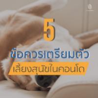 5 ข้อ เตรียมตัวก่อนเลี้ยงสุนัขในคอนโด