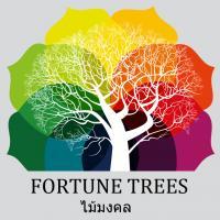 ต้นไม้มงคล เสริมฮวงจุ้ยให้คอนโด