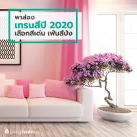 พาส่องเทรนสีแห่งปี 2020 เลือกสีเด่น เฟ้นสีปัง