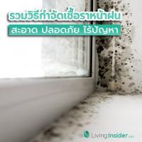 รวมวิธีกำจัดเชื้อราหน้าฝน สะอาดปลอดภัยไร้ปัญหา