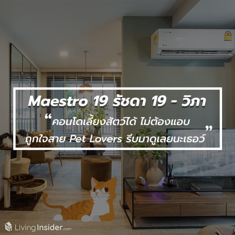 Maestro 19 รัชดา 19 - วิภา - คอนโดเลี้ยงสัตว์ได้ ไม่ต้องแอบ ถูกใจสาย Pet Lovers รีบมาดูเลยนะเธอว์