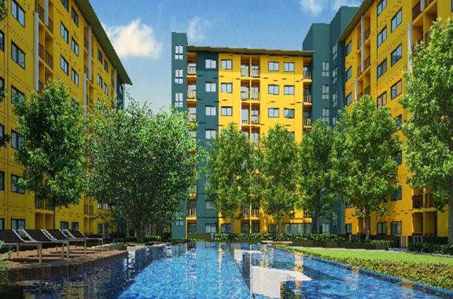 For RentCondoRangsit, Patumtani : For rent, Plum Condo Park Rangsit, near Bangkok University, free central, free car parking.