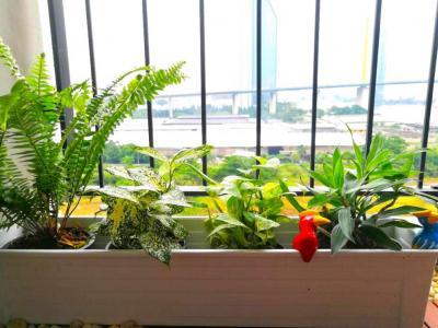 ให้เช่า คอนโดแชปเตอร์วันโมเดิร์นดัช ห้องสวยตกแต่งพร้อมอยู่ วิวแม่น้ำ ใกล้ธนาคารกสิกรไทยสำนักงานใหญ่