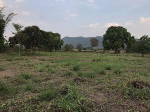 For SaleLandKorat KhaoYai Pak Chong : Land for sale in Khanong Phra Sub-district, Pak Chong District, 9 rai 2 ngan