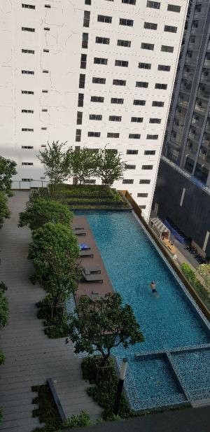 เช่าคอนโดพระราม 9 เพชรบุรีตัดใหม่ : เจ้าของให้เช่า1นอน วิวสระว่ายน้ำ พร้อมอยู่