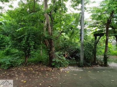 For SaleLandOnnut, Udomsuk : Land for sale in Sukhumvit 71 area 159 Sq. Pridi Banomyong 14, near BTS Phra Khanong, good environment