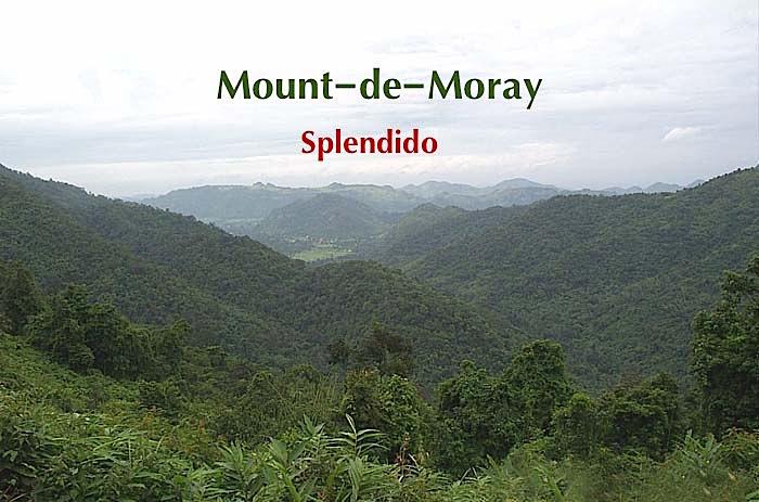 Mount-de-Moray แบ่งขายที่ดินสวยพัฒนาพร้อมแล้วบนเนินเขาสูงกว่า 450 เมตร (ระดับน้ำทะเล) เหลือเพียง 4 แปลงเท่านั้น