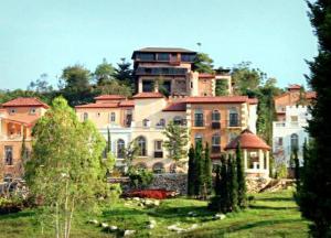 ขาย บ้าน เขาใหญ่ ดิไอย์รี่ (ปาริโอ) บนเนินเขาส่วนตัวสไตล์อิตาลี สวยเกินคำบรรยาย ถ่ายหนังบ่อยมาก ติดToscana
