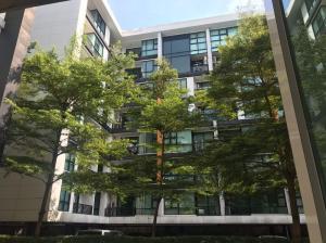 เช่าคอนโดสุขุมวิท อโศก ทองหล่อ : ให้เช่า คอนโด D65 ห้องใหญ่ ขนาด 50 ตร.ม.