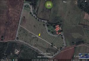 สวนสวรรค์-สวรรค์บนดินที่คุณครอบครองได้-ขนาด-32-ไร่-3-งาน-82-ตารางวา