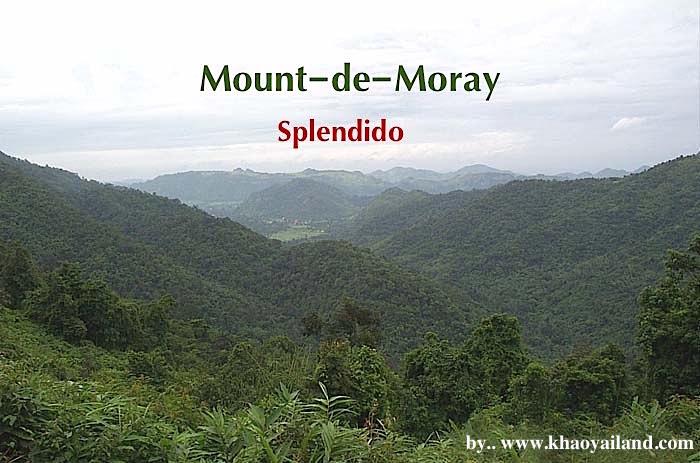 For SaleLandKorat KhaoYai Pak Chong : Mount-de-Moray Sell beautiful land, developed ready on a hill above 450 meters (sea level), only 3 plots left.