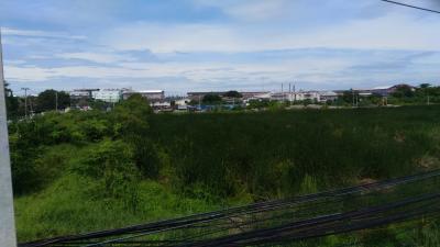 ขายที่ดินนครปฐม พุทธมณฑล ศาลายา : ขายที่ดิน 11ไร่ ติดถนนเพชรเกษม ใกล้สวนสามพราน ตรงข้ามการไฟฟ้าสาขาอ้อมใหญ่