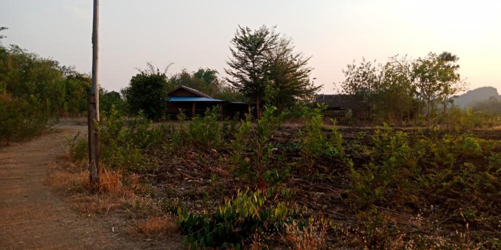 For SaleLandSukhothai : Land for sale at Ban Nam Rawi, Thung Saliam District, Sukhothai Province, 56 rai, sold 15 million