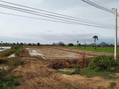 For SaleLandCha-am Phetchaburi : Beautiful land, good location, pleasant environment