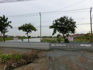 For SaleLandRamkhamhaeng,Min Buri, Romklao : Land for sale Sangkhasanti Road, Krathum Rai, Nong Chok, Bangkok
