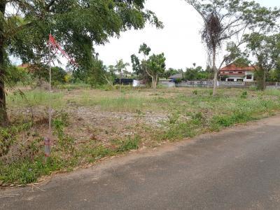 ขายที่ดินพัทยา ชลบุรี : ขายด่วนที่ดินสวยสัตหีบบางเสร่แยกเจหลังโครงการเซ็นสิริ 3 ไร่ 85 ตารางวา