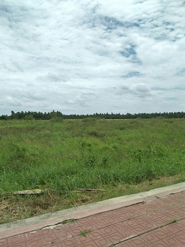 For SaleLandNakhon Pathom, Phutthamonthon, Salaya : Land for sale on Salaya - Nakhon Chai Si Road Near Central Salaya Pink city plan