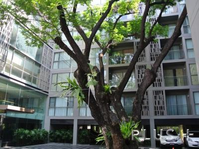 For SaleCondoSukhumvit, Asoke, Thonglor : Sell Via Botani, 3 bedrooms, in the middle of the city, cheap price, ask people to really be interested.
