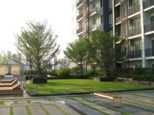 ขายคอนโดสุขุมวิท อโศก ทองหล่อ : Best offer 1B (only 13x,xxx/sq. m.) high floor size 52, City view, Fully furnished, Nice layout, Sell 6.99 MB only (BTS Thonglor)