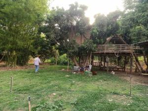 ขายบ้านลำพูน : ขายบ้านสวนหลังใหญ่ บนพื้นที่เกือบ 4 ไร่ พร้อมสวนลำไย ติดถนนใหญ ลี้ ลำพูนขายต่ำกว่าราคาประเมินมาก!!!