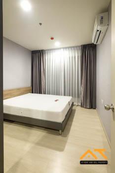 เช่าคอนโดอ่อนนุช อุดมสุข : ให้เช่า Life Sukhumvit 48  1นอน  ขนาด 31 ตร.ม. ห้องสวย พร้อมอยู่