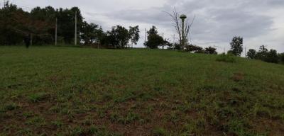 ขายที่ดินเพชรบูรณ์ : ที่ดินบนเขาค้อไฮแลนด์ บนเนิน มุมวิวกังหันลม