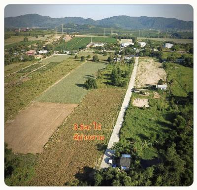 ขายที่ดินระยอง : รหัส106 ที่ดินแบ่งขาย มะขามคู่ นิคมพัฒนา ระยอง ตร.ว. ละ 10,000 บาท