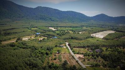 ขายที่ดินระยอง : รหัส108 ที่สวนผลไม้/ บ้านสวน ในอ้อมกอดของธรรมชาติและขุนเขา