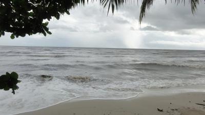 ขายที่ดินตราด : ขายที่ดิน ติดทะเล 10ไร่ อำเภอ คลองใหญ่ จ.ตราด
