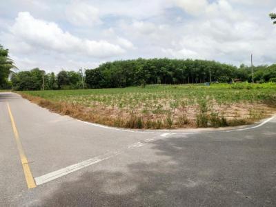 ขายที่ดินระยอง : 0083 ที่ดินเปล่าโค้งหัวมุม 7 ไร่ ระหว่างซอย 8-ซอย 9 นิคมพัฒนา 10.5ล