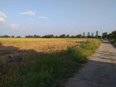 For SaleLandNakhon Sawan : Land for sale near the railway 36 Rai, Takhli District, Nakhon Sawan