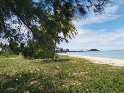 ขายที่ดินนครศรีธรรมราช : ขายที่ดินโฉนด สิชล นครศรีธรรมราช ติดทะเล สวยมาก หาดปลายทอน AL015