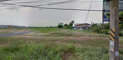 ขายที่ดินรังสิต ธรรมศาสตร์ ปทุม : ขายที่ดินขนาด 41 ไร่ ติดถนนลำลูกกา คลองสอง ใกล้รถไฟฟ้าสายสีเขียว