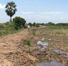 ขายที่ดินพัทยา ชลบุรี : ขาย ที่ดิน สระสี่เหลี่ยม พนัสนิคม ชลบุรี 115 ไร่ ติดกับ การประปาสาขาพนัสนิคม 800000 ต่อไร่