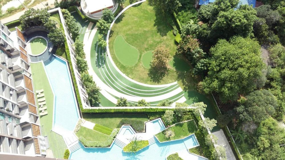 ขายคอนโดพัทยา ชลบุรี : Rent/Sale Condo KnightsBridge the Ocean Sriracha 29.63 sq.m 23th floor Nice View, Fully furnished