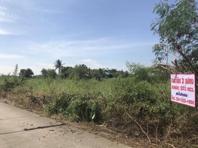 For SaleLandRangsit, Patumtani : Land for sale in Lat Lum Kaeo