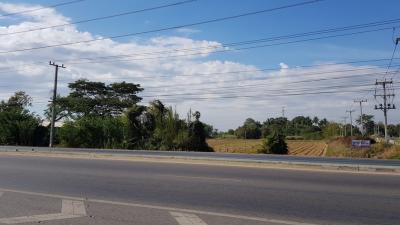 ขายที่ดินพิษณุโลก : ขายที่ดิน 3-2-54 ไร่ ติดถนนใหญ่ ใกล้ เซ็นทรัล พิษณุโลก ต.บ้านกร่าง (LPHS001-S)