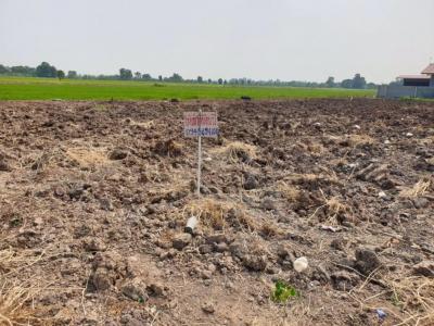 เช่าที่ดินมีนบุรี-ร่มเกล้า : ให้เช่าที่ดิน 1 ไร่ ซอยนิมิตรใหม่36 เขตคลองสามวา 10,000 บาท