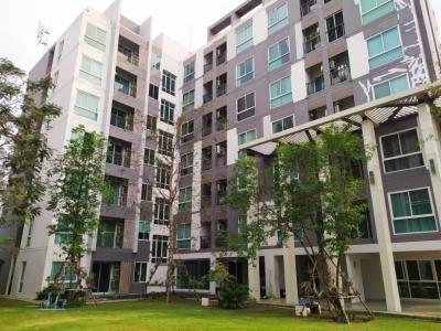 For SaleCondoPhutthamonthon, Salaya : Zelle Salaya condo for sale, Condo for sale, Celle Salaya, cheap beautiful room, near Mahidol University, Salaya, Phutthamonthon, Nakhon Pathom