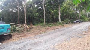 ขายที่ดินกระบี่ : ขายที่ดินเปล่า 2 ไร่ 3 งาน ใจกลางเมืองกระบี่ ราคาถูก เหมาะลงทุน