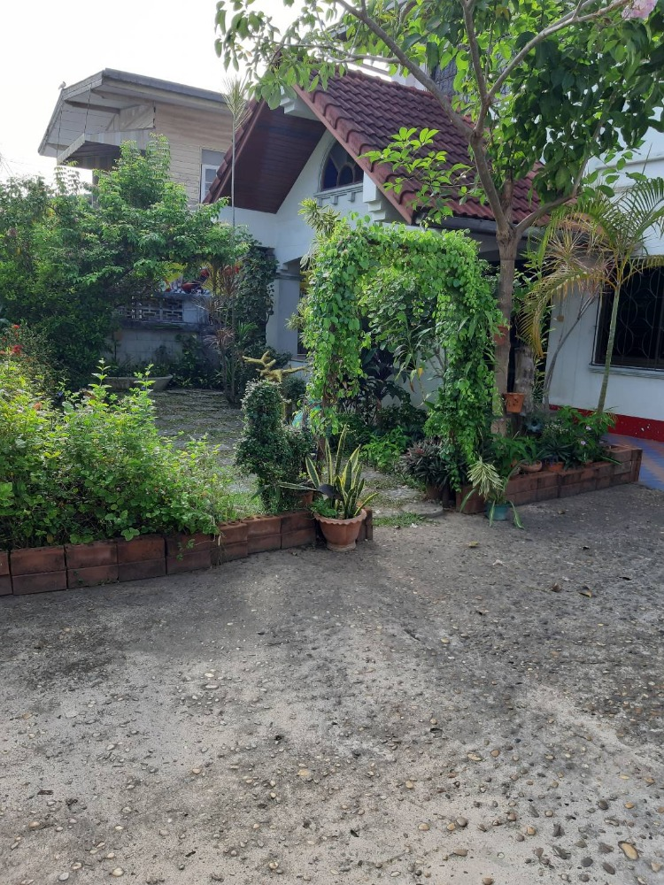 For SaleHouseUbon Ratchathani : Sell a shop on Chayangkun Road with 90 bungalows that have a garden.
