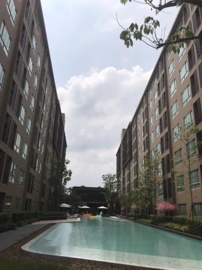 For RentCondoPhutthamonthon, Salaya : Urgent rent D-condo Campus kamphansan 6,000 baht per month including central fee Do not miss this price.