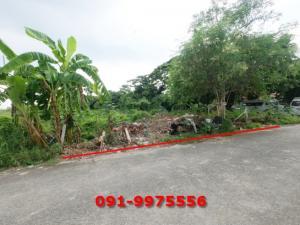 For SaleLandChaengwatana, Muangthong : Land for sale, beautiful, cheap, area 105 sq m, Soi Chaengwattana - Pak Kret 20 (Tonson 6), suitable to build a home office home near Central Chaengwattana.