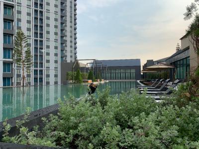 เช่าคอนโดรัชดา ห้วยขวาง : Owner Post ให้เช่า Chapter one Eco รัชดา ห้วยขวาง ห้องสวยมากๆ วิวสระว่ายน้ำเต็มๆ เห็นจากห้องนอนและห้องนั่งเล่น