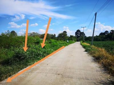 For SaleLandKorat KhaoYai : Land for sale in Lat Buakhao, Sikhio district, Nakhon Ratchasima province, area 2-3-47 sq. Wah (1147 sq.m)
