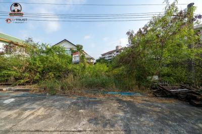 For SaleLandSamrong, Samut Prakan : Sales of land for development projects Ubon Sri Phraek Sa village, 50 square meters.