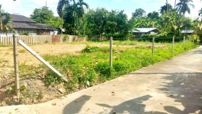 For SaleLandChiang Mai : Land for sale 110 sqw. Beautiful plot of land, next to the road, 2 electric power, ready Suitable to build a house In the community of Sansai district, Chiang Mai, cheap price