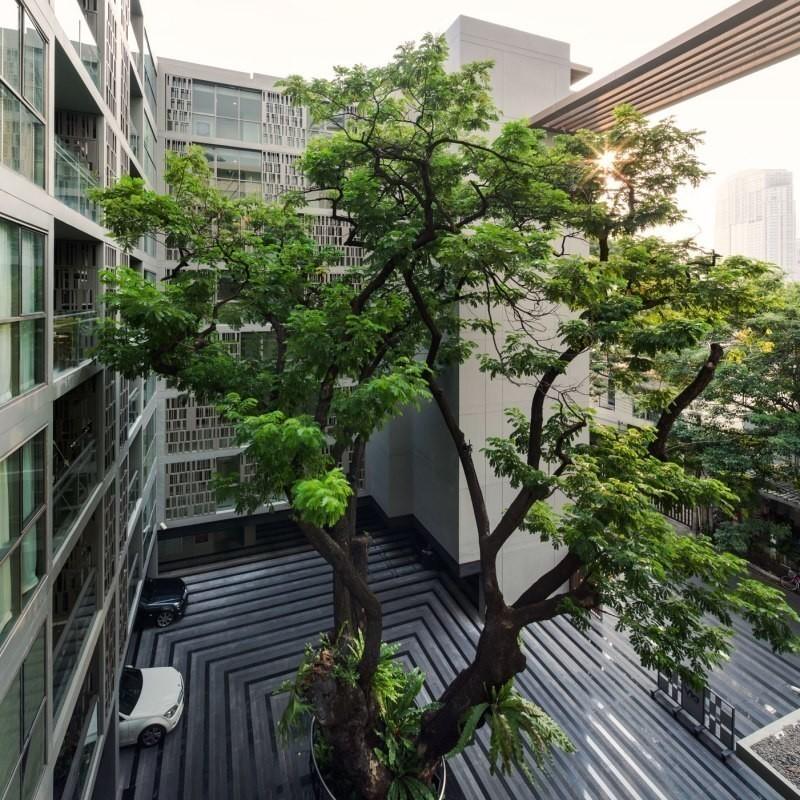 For RentCondoSukhumvit, Asoke, Thonglor : ✨For Rent Stylish 1 Bed Exquisite Via Botani near Thonglor BTS✨